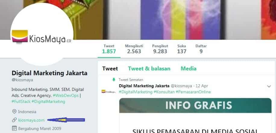 link website di profile twitter