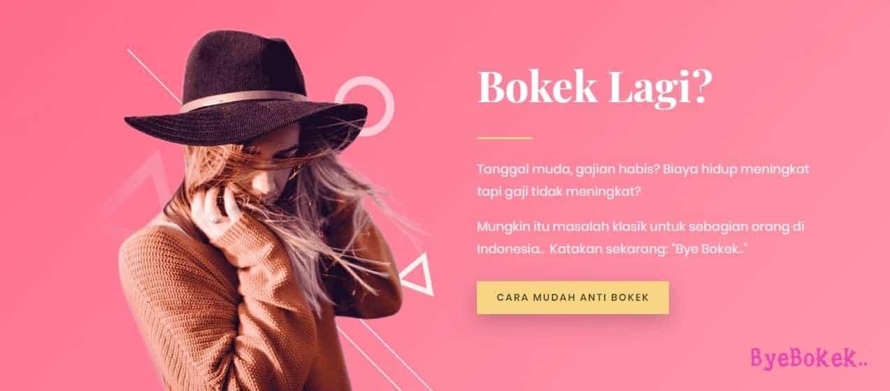 contoh situs web satu halaman: byebokek.com