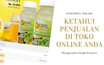 Melihat Penjualan di Toko Online Melalui Google Analytics